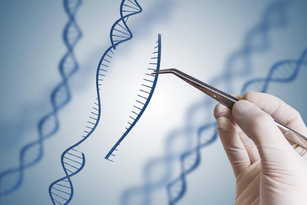 انجام پروژه الگوریتم ژنتیک در متلب