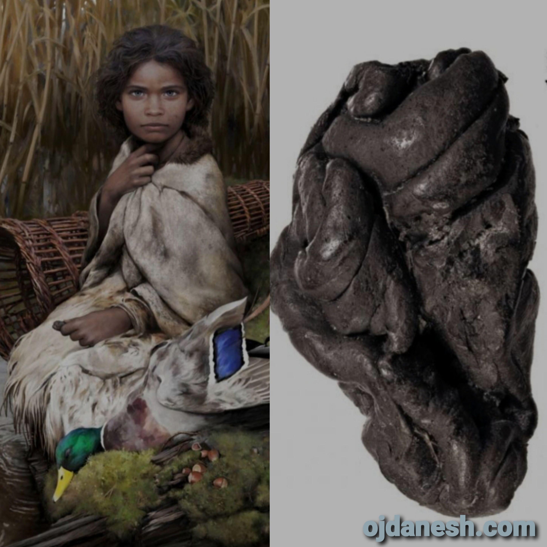 https://ojdanesh.com/1398/8371/استخراج-ژنوم-کامل-انسان-از-آدامس-باستانی/