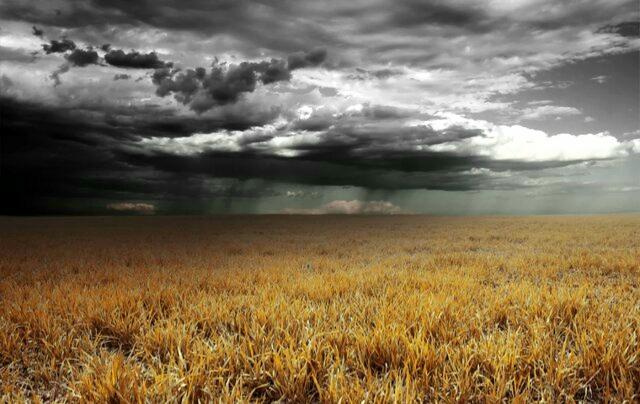 https://ojdanesh.com/1399/10275/رایحه-باران-دلیل-۵۰۰-میلیون-ساله-دارد/